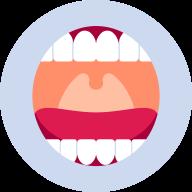 Mulut & Tenggorokan