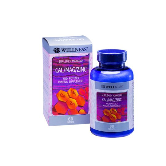 WELLNESS CAL/MAG/ZINC 60 TABLET