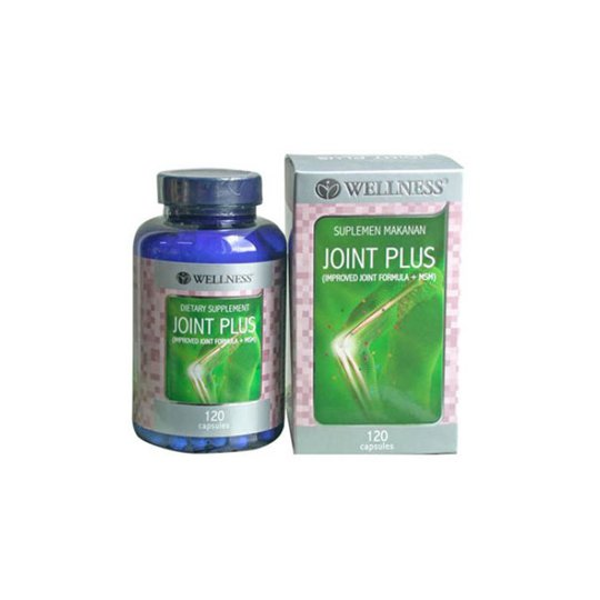 WELLNESS JOINT PLUS 120'S