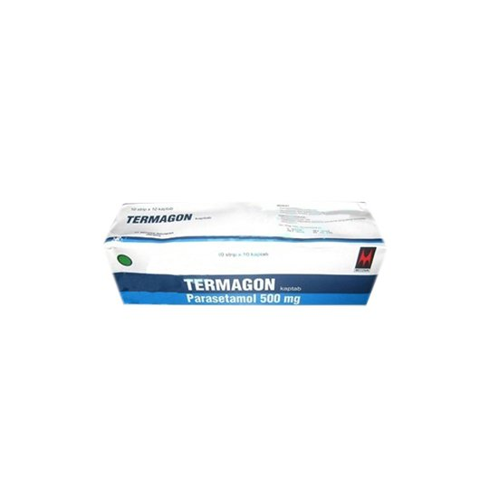 TERMAGON 500 MG 10 TABLET