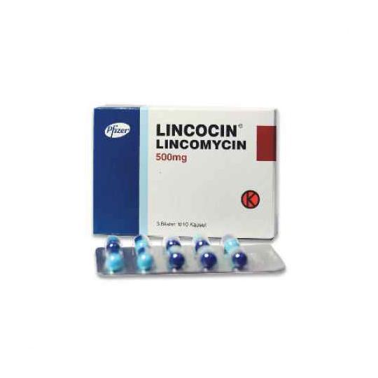 LINCOCIN 500 MG 10 KAPSUL