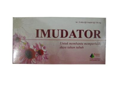 IMUDATOR 6 KAPSUL